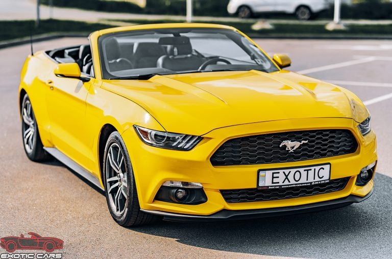Sports car rental: the best test drive before buying